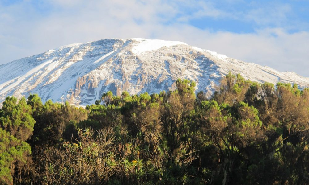 kilimanjaronationalpark